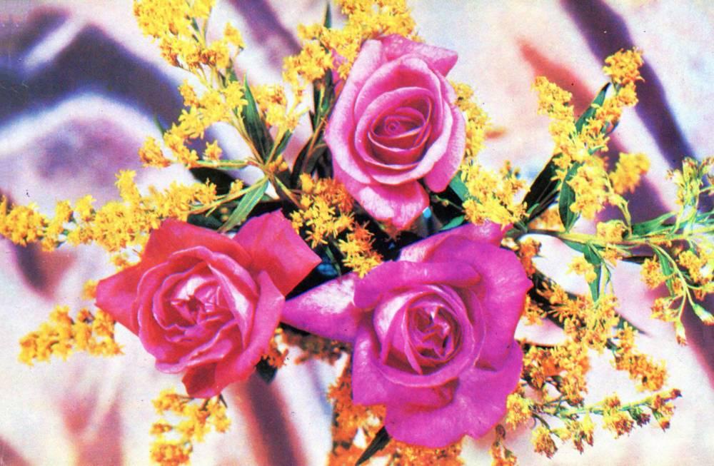 С днем 8 марта, советская открытка.  1976 год. Букет роз