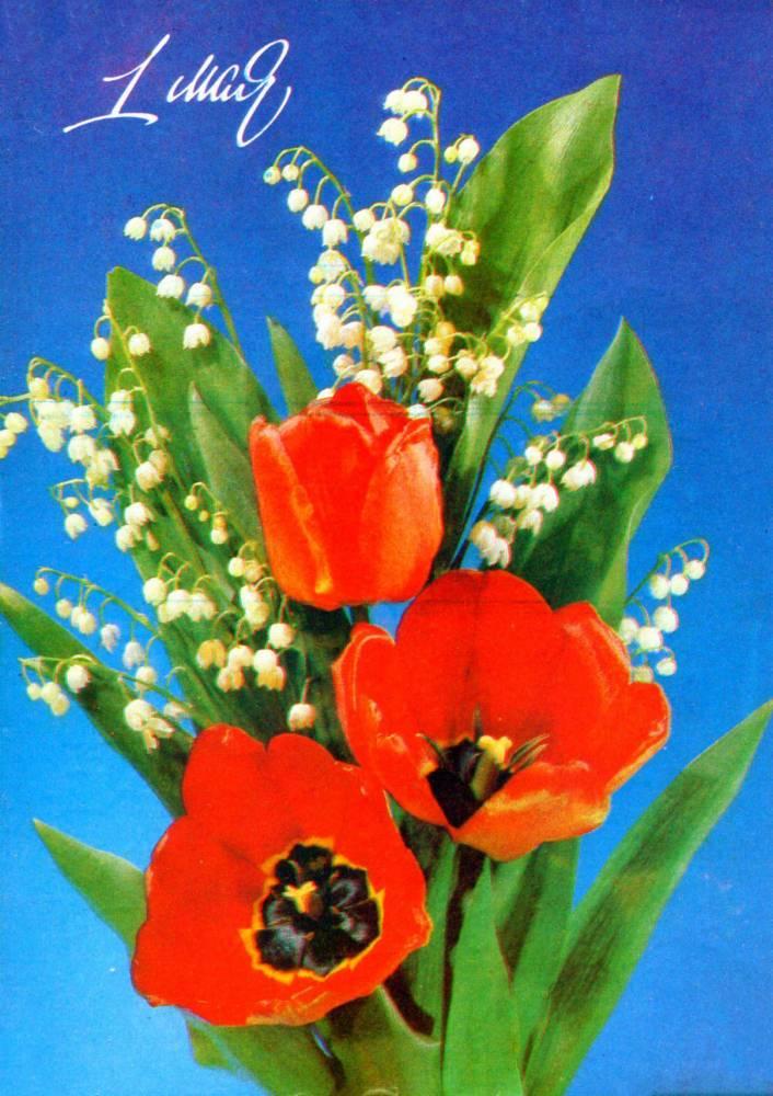 С праздником 1 мая, советская открытка, тюльпаны и колокольчики, 1991