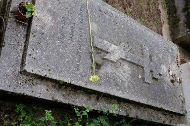 Могила Тэффи на кладбище Сент-Женевьев-де-Буа