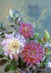 Цветы, советская открытка. Фотограф И. Дергилев