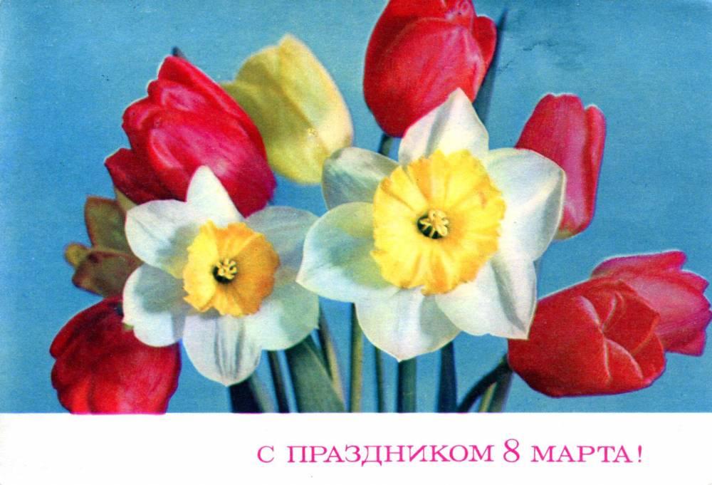 С праздником 8 марта, советская открытка. Художник Г. Костенко. 1972. Цветы