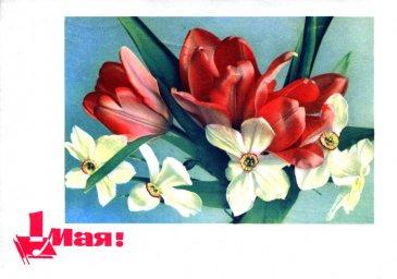 1 мая, советская открытка, отпечатано МГТ, тюльпаны