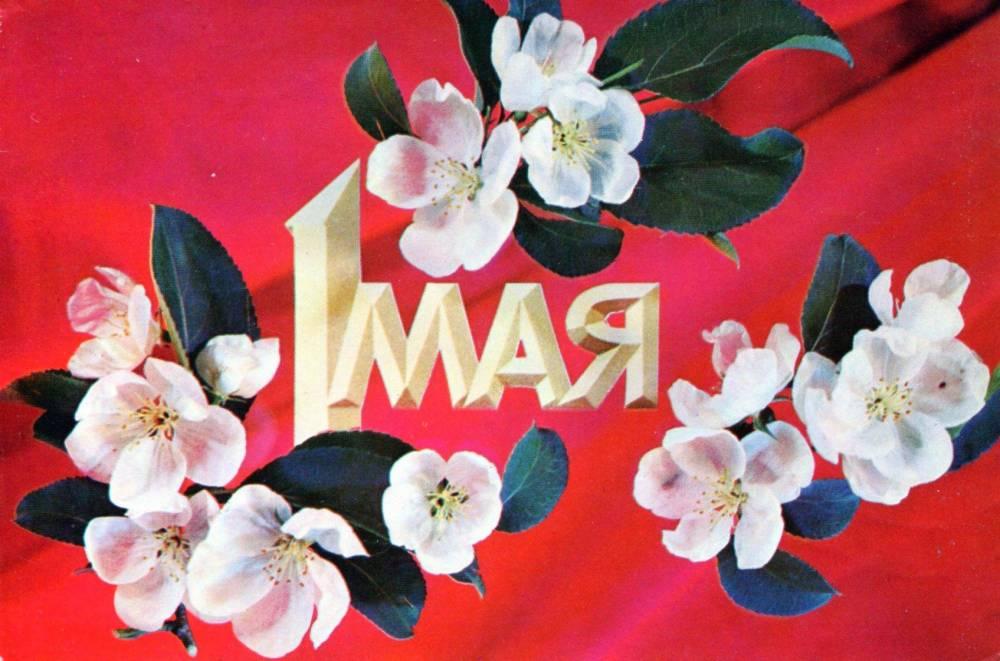 1 мая, советская открытка, отпечатано МГТ, яблони в цвету