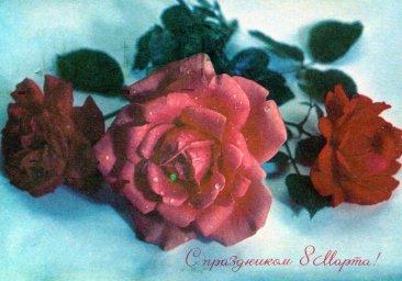 С праздником 8 марта, советская открытка. Художник Г. Костенко. 1971