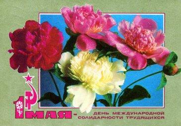 С праздником 1 мая, советская открытка, цветы, 1972