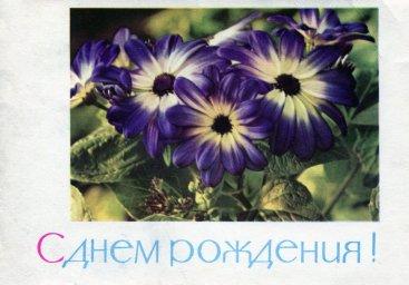 С днем рождения, советская открытка. Цветы. Фотограф П. Смоляков