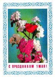 С праздником 1 мая, советская открытка, цветы и яблоневый цвет, 1977
