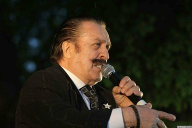 Вилли Токарев на сцене в Зеленограде 7