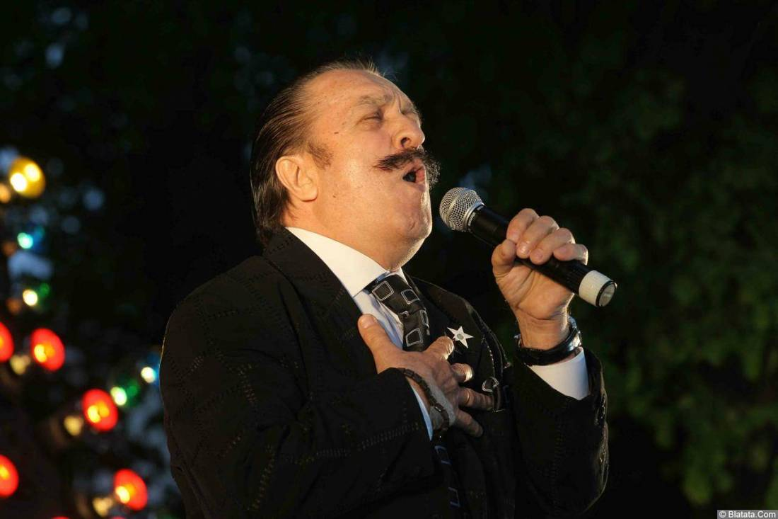 Вилли Токарев на сцене в Зеленограде 10